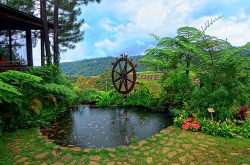 Dahilayan Forest Park Resort, Libona