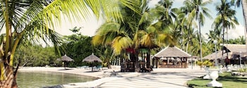 Whispering Palms Island Resort Cebu Property Grounds