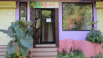 Hotel - Daffodils Guest House