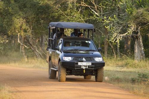Mahoora Tented Safari Camp All-Inclusive - Wilpattu, Nochchiyagama
