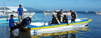 Angelyns Dive Resort Puerto Galera Boating