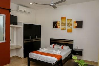 Hotel - Gayser Apartamentos