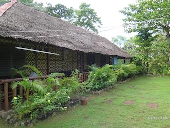 Casa Nova Garden Bohol Property Grounds