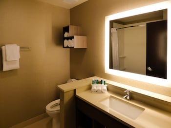 Holiday Inn Express & Suites Plymouth - Ann Arbor Area photo