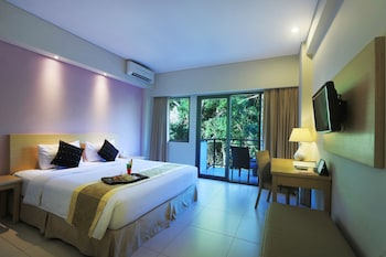 Superior Double or Twin Room, Hill View