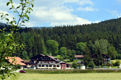 . Wellness- und Vitalhotel Böhmhof