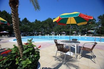 Hamanako Royal Hotel - Pool  - #0