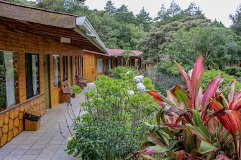 Hotel - El Bosque Trails & Eco-Lodge