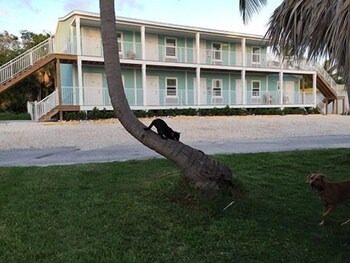 Bonefish Bay Motel