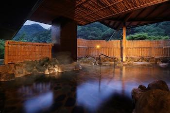 Hotel Sunshine Kinugawa - Indoor Spa Tub  - #0