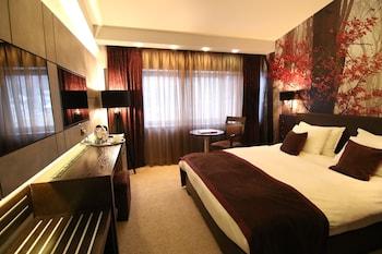 Tek Büyük Yataklı Oda, 1 En Büyük (king) Boy Yatak