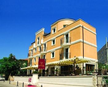 Hotel - Hotel Villa Cittar