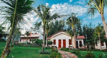 Saint Mary Resort - Courtyard  - #0