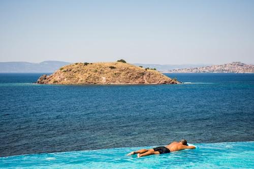 Little Bird, North Aegean