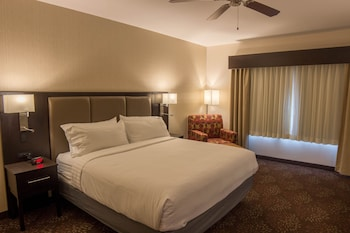 Deluxe Room, 1 King Bed, Accessible, Non Smoking (Hearing, Roll-In Shower)