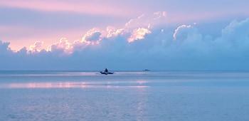 The Emerald Playa Palawan Fishing