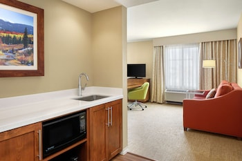 Studio Suite, 1 King Bed with Sofa bed, Non Smoking, Refrigerator & Microwave