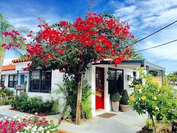 Oasis Hotel 0 9 Miles From Las Olas Boulevard