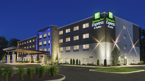 . Holiday Inn Express & Suites Medina