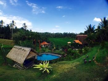 Hotel - Bali Lush