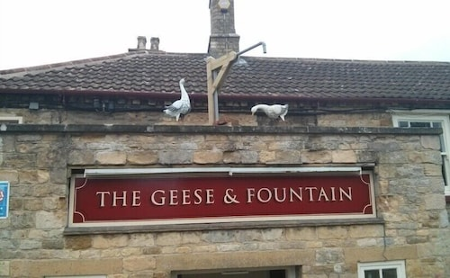 . The Geese and Fountain