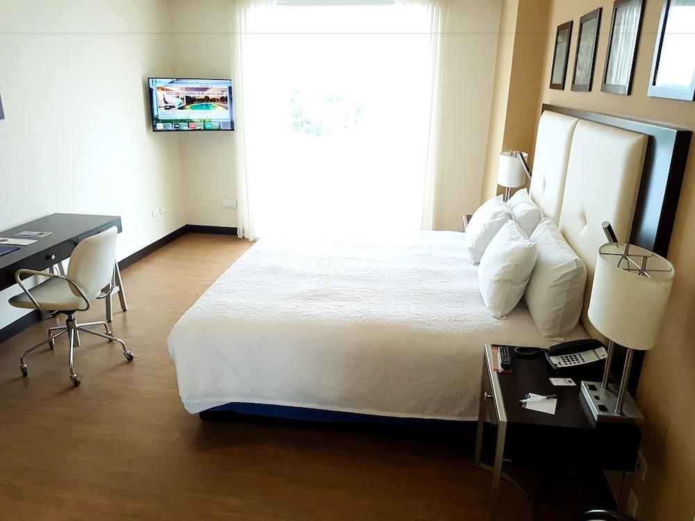 https://i.travelapi.com/hotels/14000000/13180000/13179500/13179436/9c684ce2_z.jpg