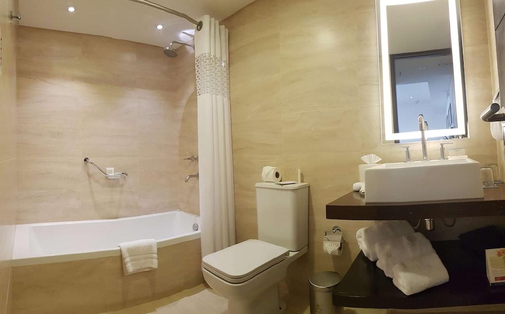 https://i.travelapi.com/hotels/14000000/13180000/13179500/13179436/c3248664_z.jpg