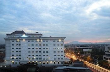 Hotel - Hotel Maharani