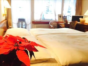 Hotel - Antares