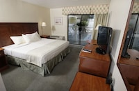 Poolside Room, 1 King Bed, Efficiency at The Bay Resort in Dewey Beach