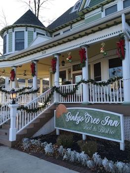 Ginkgo Tree Inn