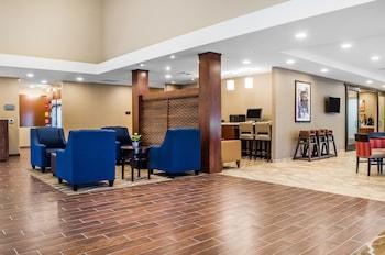 Comfort Suites Manheim - Lancaster - Lobby Sitting Area  - #0