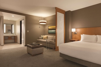 Standard Room, 1 King Bed with Sofa bed
