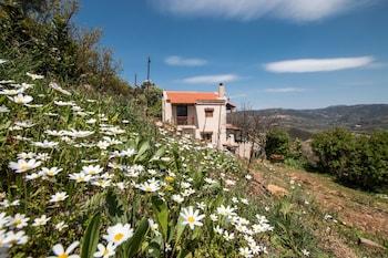 Aori Hillside Villa - Property Grounds  - #0