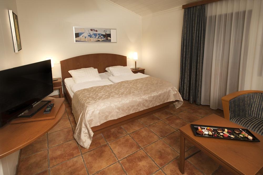 https://i.travelapi.com/hotels/14000000/13500000/13492800/13492770/a8d7884a_z.jpg