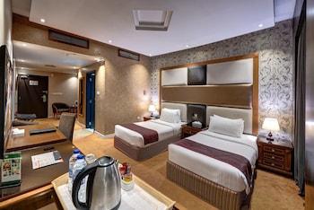Hotel - Delmon Palace Hotel