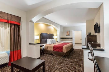 Hotel - Econo Lodge Inn & Suites Spring - Houston North