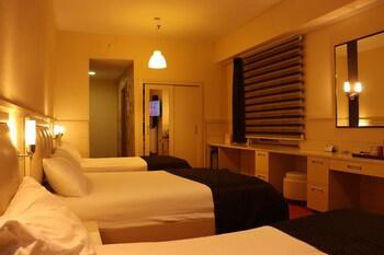 Family Quadruple Room, Multiple Beds