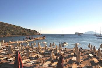 Hotel - Aegeon Beach Hotel