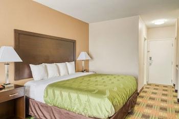 三叉戟套房飯店 Trident Inn & Suites