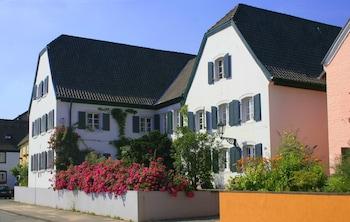 RheinRiver Guesthouse - Boutique Art Hotel am Rhein