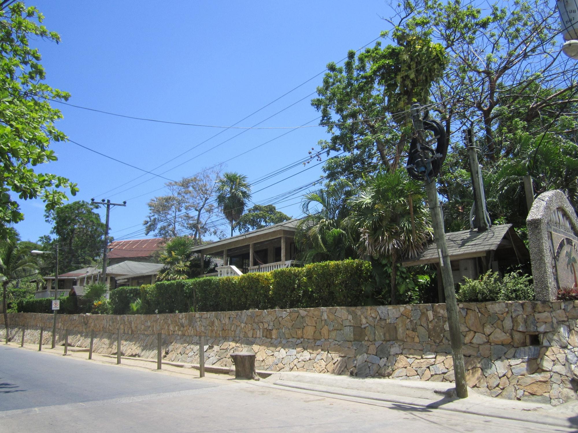 Coconut Tree West End, Roatán