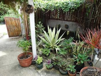 ROYAL PARADISE GUESTHOUSE Garden