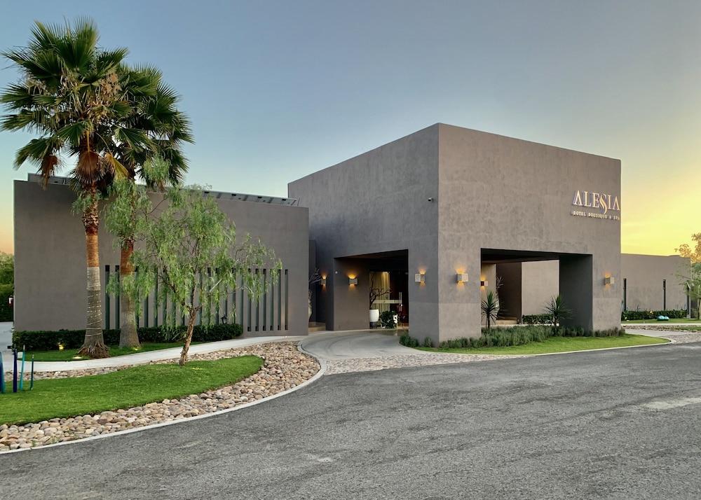 Hotel Hotel Alesia Boutique