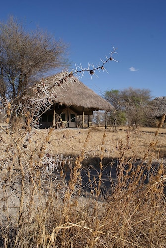 Whistling Thorn Tented Camp, Babati