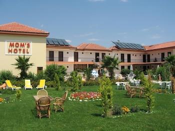 芒姆斯飯店