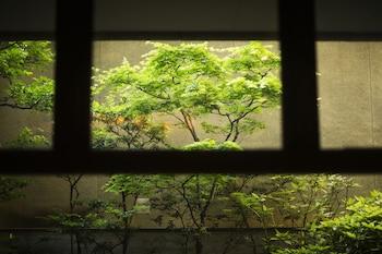 MIYAJIMA KINSUIKAN Garden