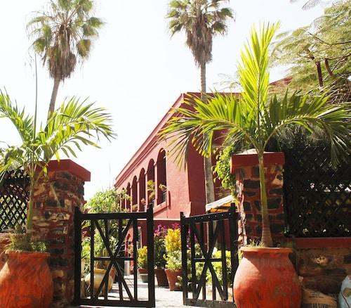 Gallé Niwa, Dakar
