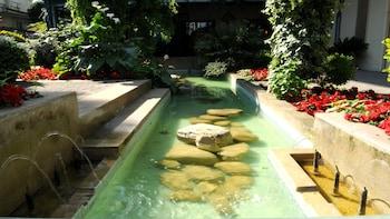 Hotel Stella - Fountain  - #0