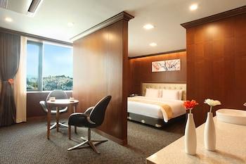 ホテル スカイパーク キングスタウン 東大門